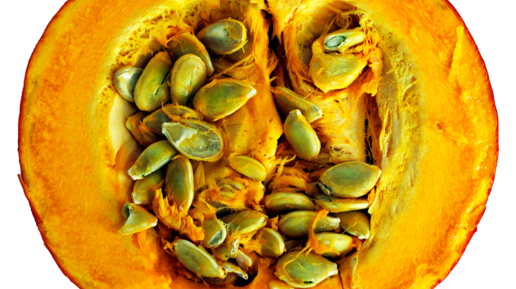 Pumpkin Extract and It's Multiple Skin Benefits